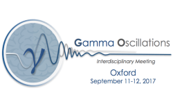 Gamma Oscillations Meeting Oxford